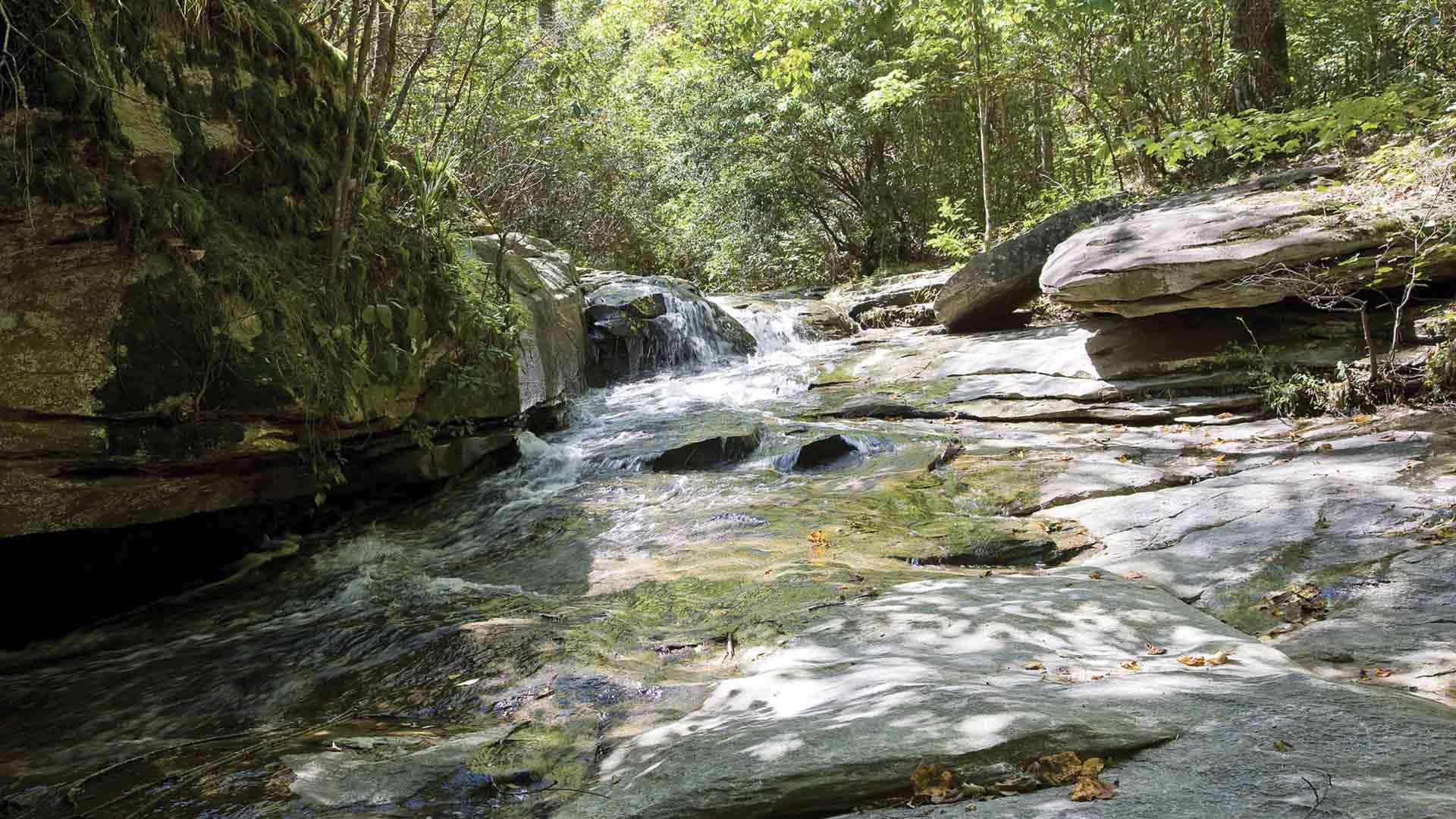 waterfall stream alongside hiking trail